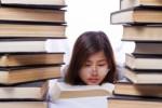Ensayo sobre la importancia del currículum durante la enseñanza secundaria.