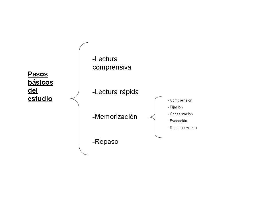 Pasos básicos del estudio