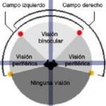 Visión periférica