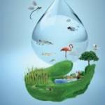 Propiedades biológicas del agua