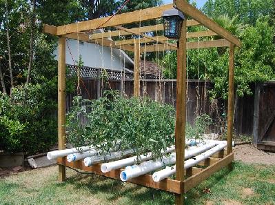 Cultivo Hidroponico Como Hacer Un Ensayo Bien - Cultivo-hidroponicos